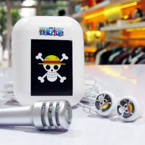 Earphone Mic With Case One Piece